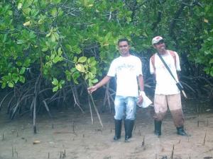 Mangrove Tanjung Batu Piru Seram Barat